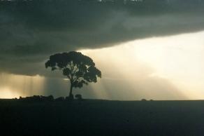 Australia, 2002
